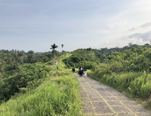 2018 Bali Retreat – Day 3